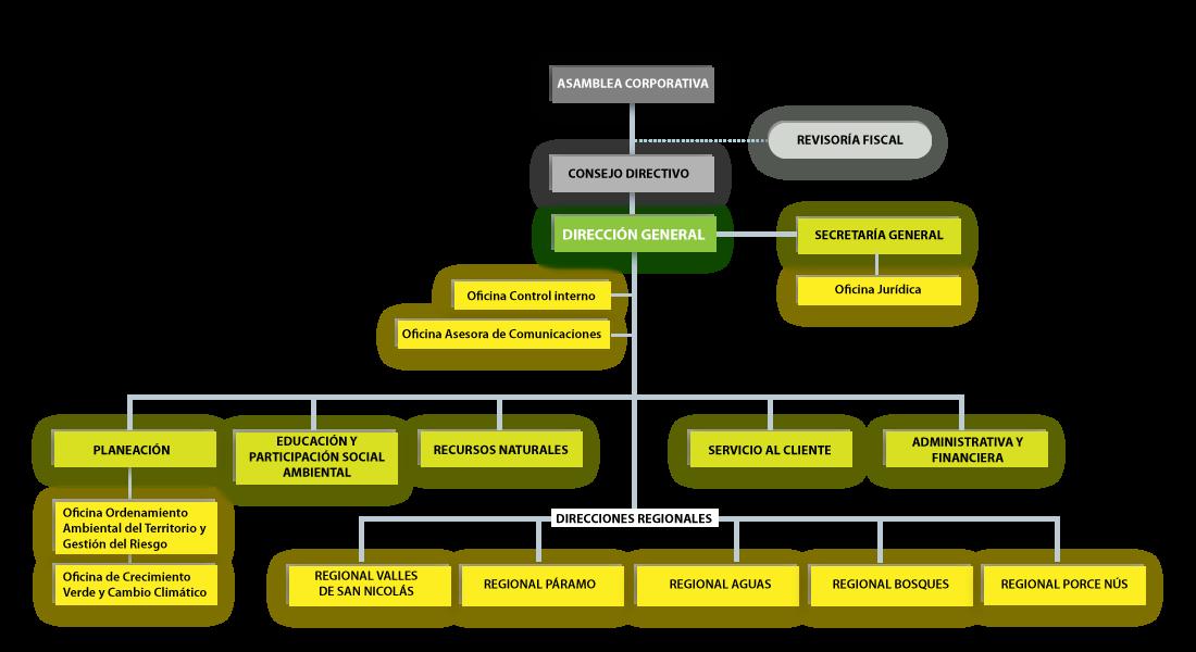 Estructura Organizacional Cornare