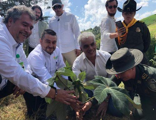 #SembrarNosUne, la invitación del Gobierno para la restauración del territorio
