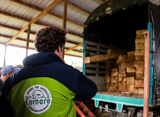 Entre todos podemos parar la tala ilegal de árboles ¡Compre madera legal!