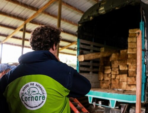 Empresas con certificado de reconocimiento a la procedencia legal de la madera