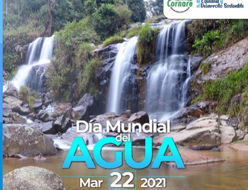 #DíaMundialDelAgua Cornare ejemplo nacional en Saneamiento básico, la clave para el cuidado del recurso hídrico en la región
