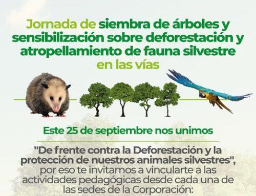 Jornada de siembra de árboles y sensibilización sobre deforestación y atropellamiento de fauna silvestre en las vias