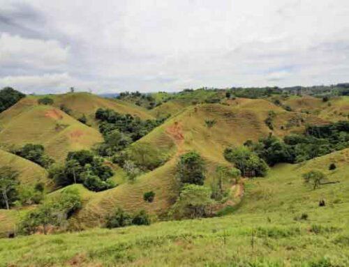 Cornare archiva solicitud de licenciamiento ambiental para actividad minera en la región