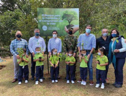 En la Sembratón Nacional Cornare alcanzó un acumulado de 2.966.407 árboles plantados